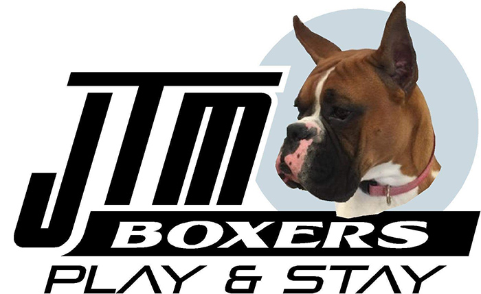 JTM Boxers Play and Stay
