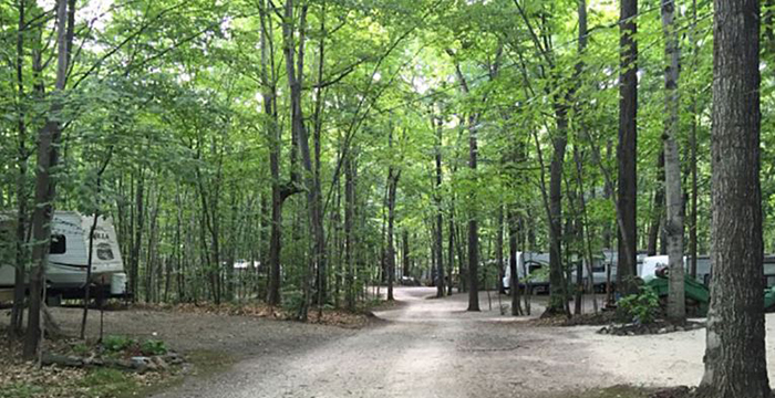 Quietwoods South Camping Resort