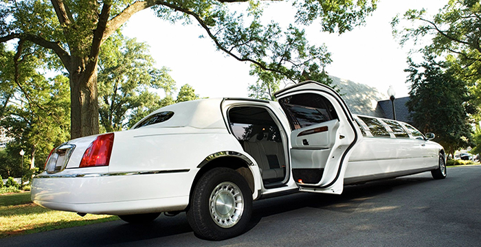 Door County Limousine LLC