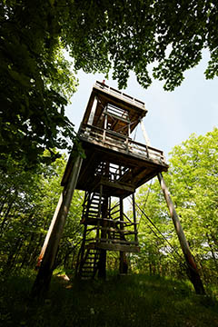 Mountain Park and Lookout Tower (1)
