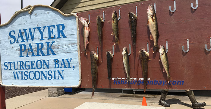 Door County Fish N Trips & Tours